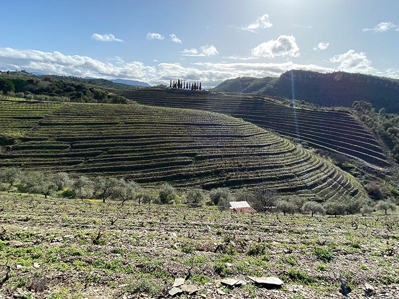 Priorat photo